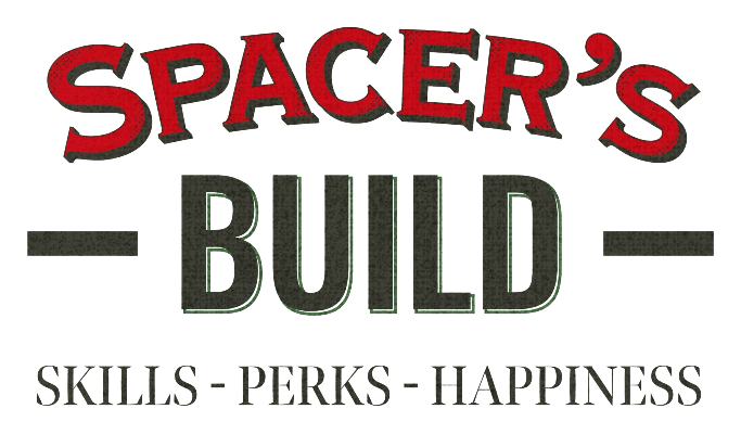 Spacer's build